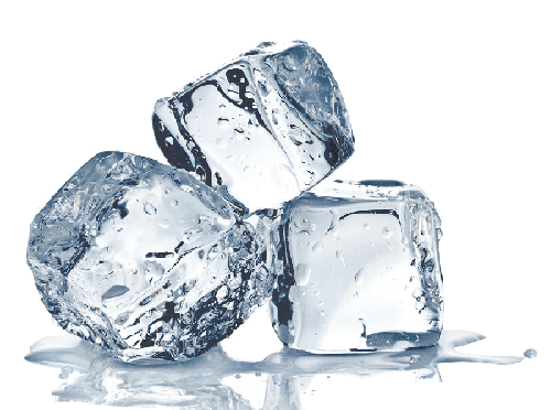 ice maker maintenance